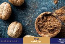 Photo of فوائد جوز الطيب ماهو جوز الطيب بالصور 2021 البشرة الشعر