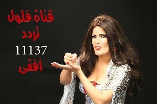 صورة اليوم السابع ينشر فيديو اغلاق قناة فلول والقبض على سما المصري