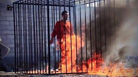 صورة نشر صور اعدام حرق الطيار الأردني كساسبة اليوم 3-2-2015
