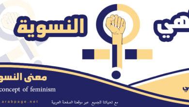 صورة معنى النسوية Feminism  وماهو مفهوم كلمة نسويات