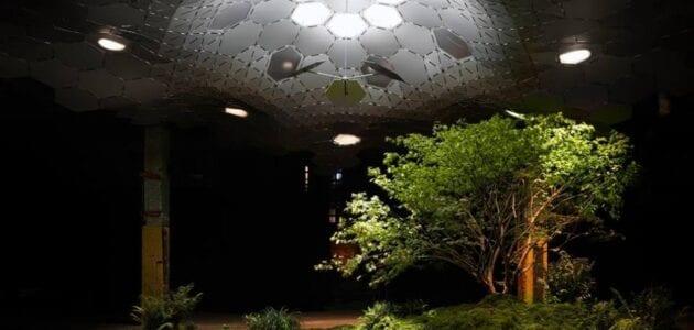 صور اول حديقة تحت الأرض في نيويورك السياحة في امريكا نيويورك 2021
