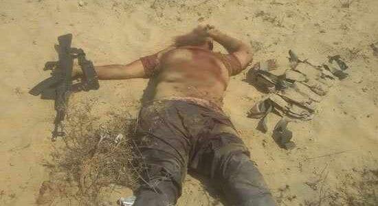 الجيش المصري يدك عناصر بيت المقدس في سيناء