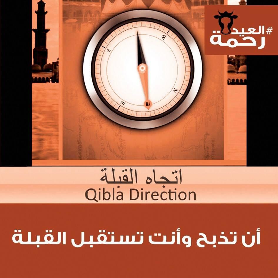 Photo of العيد رحمة حملة توعوية لرحمة الحيوان تاريخ موعد عيد الاضحى 2015 سنة 1437هـ
