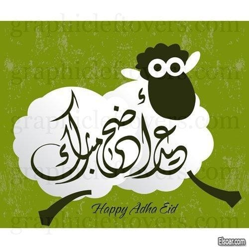صور خروف العيد 2021 عيد الأضحى 1442 مناسبة خلفيات الصفحة العربية