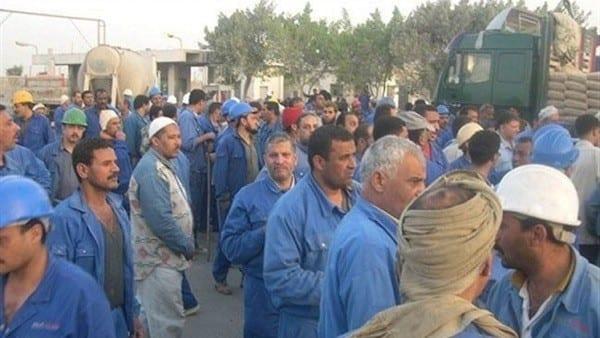 Photo of حقيقة الإستغناء عن العمالة المصرية في مجموعة بن لادن في السعودية