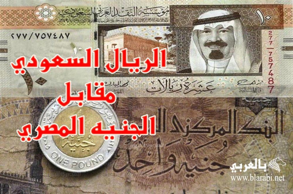 سعر الريال السعودي مقابل الجنية المصري
