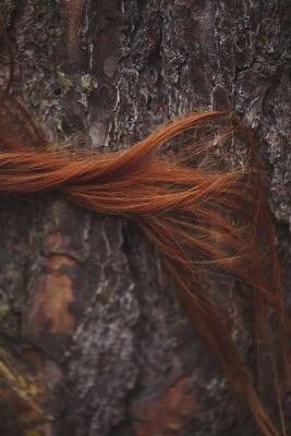 تفسير رؤية الشعر الطويل النابلسي