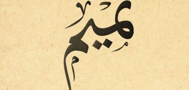 صفات و معنى اسم تميم Tamim