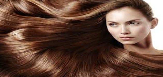 صورة تفسير رؤية شعر الإنسان في المنام
