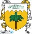 صور شعار علم مملكة الجبل الأصفر الدولة الجديدة - الصفحة العربية