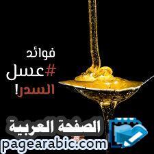 أسعار العسل اليمني