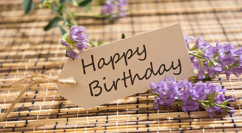 عيد ميلاد صديقي - الصفحة العربية