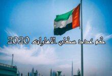 صورة عدد سكان الإمارات 2020
