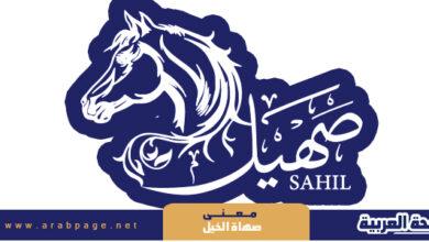Photo of معنى صهاة الخيل – صهيل الخيل
