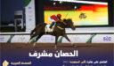 صور الحصان مشرف لـ الأمير عبدالرحمن بن عبدالله الفيصل