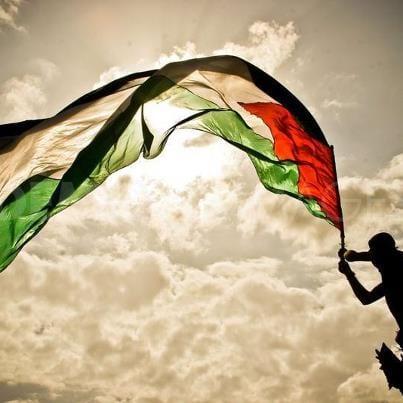 صورة صور فلسطين 2020 – علم فلسطين