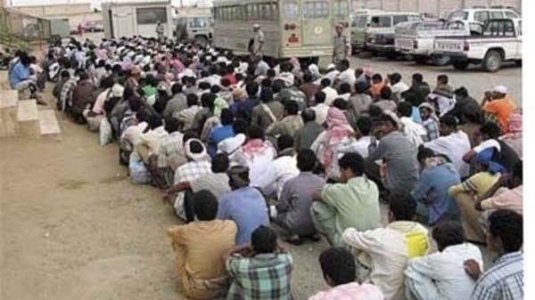 اخبار تمديد مهلة تصحيح الاوضاع في المملكة العربيه السعودية الى 3 اشهر اخرى وحضر مهنتي السائق والراعي على اليمنيين