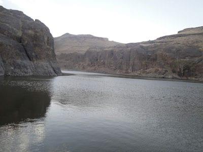 خبر الافعى الي وجدة في سد كمران في اليمن بيت بوس